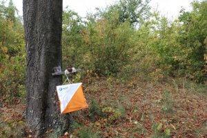 Контролна точка на купа Кракра Пернишки 2019 впарк Войниковец