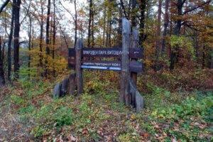 Природен парк Витоша