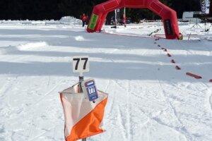 ски ориентиране